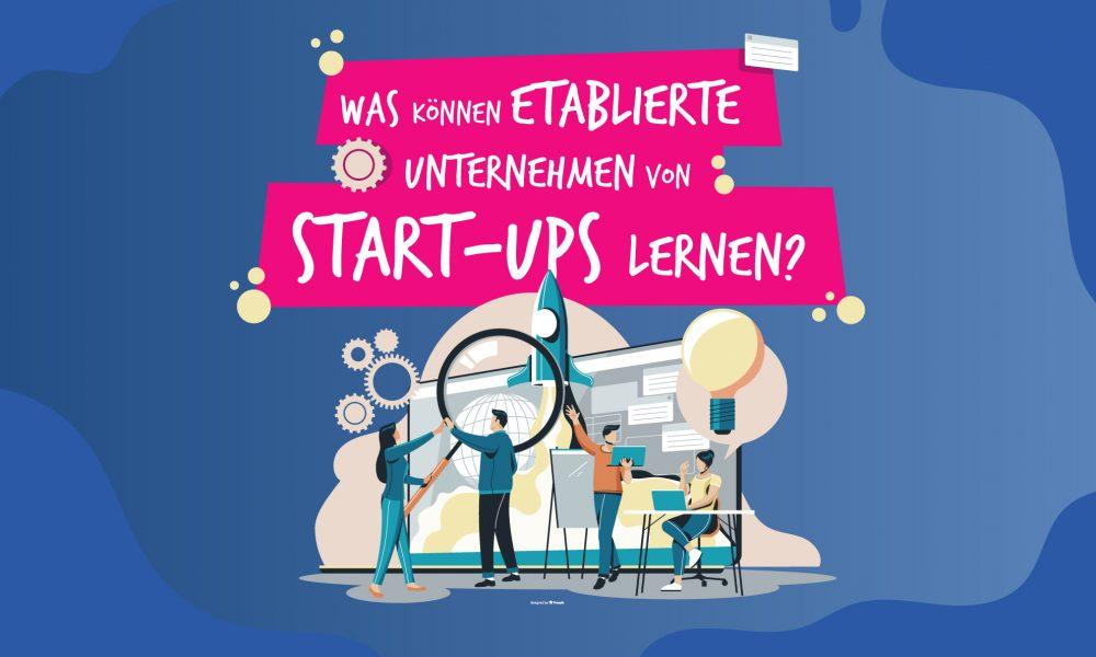 von startups lernen